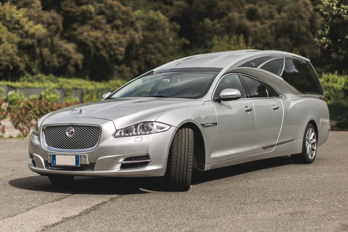 JaguarTheQueen-B.jpg