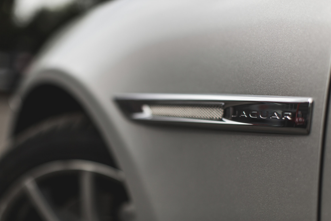 JaguarTheQueen-F.jpg